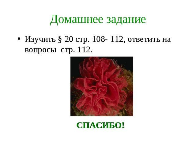 Домашнее задание Изучить § 20 стр. 108- 112, ответить на вопросы стр. 112. СП...