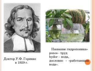 Доктор У.Ф. Герикке в 1929 г. Название гидропоника» ponos– труд hydor– вода,
