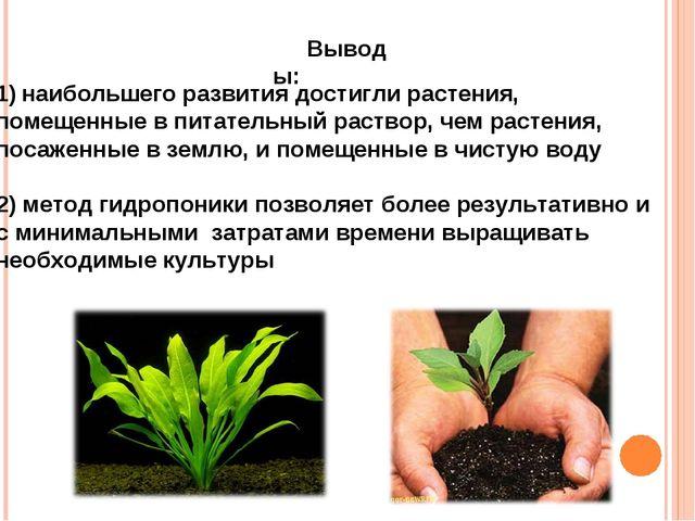 Выводы: наибольшего развития достигли растения, помещенные в питательный раст...