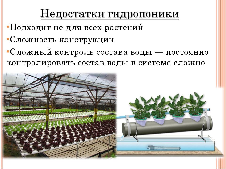 Недостатки гидропоники Подходит не для всех растений Сложность конструкции Сл...