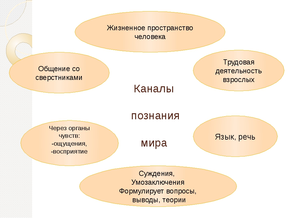 Каналы познания мира Жизненное пространство человека Суждения, Умозаключения...