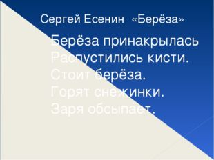 Сергей Есенин «Берёза» Берёза принакрылась Распустились кисти. Стоит берёза.