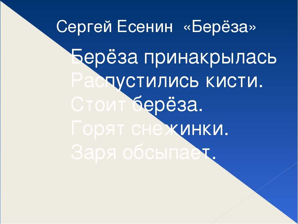 Сергей Есенин «Берёза» Берёза принакрылась Распустились кисти. Стоит берёза....