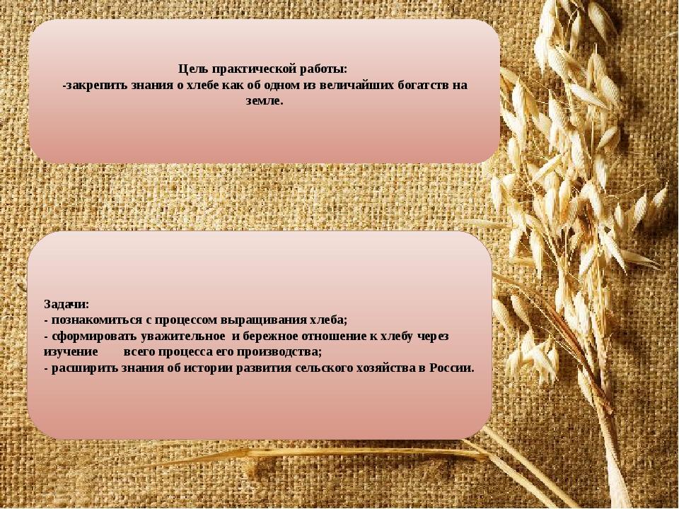 Цель практической работы: -закрепить знания о хлебе как об одном из величайши...
