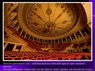 Потолок зрительного зала – своеобразный акустический экран из прессованного к