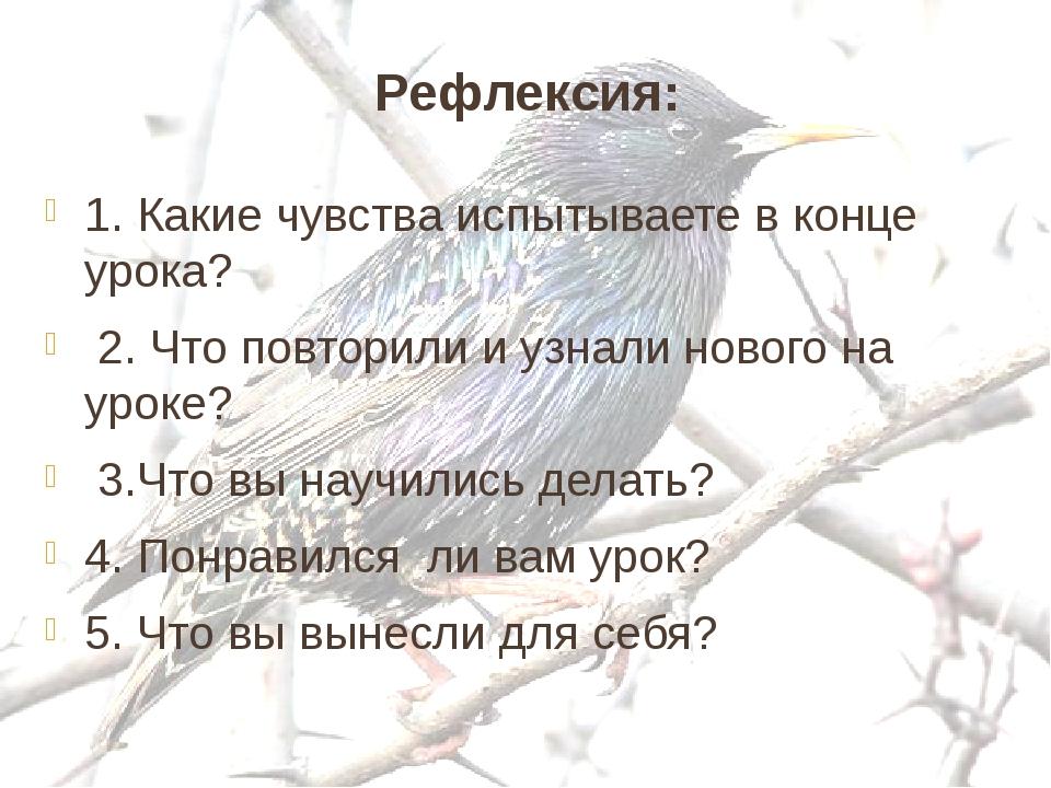Рефлексия: 1. Какие чувства испытываете в конце урока? 2. Что повторили и уз...