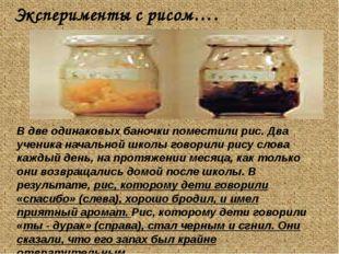 Эксперименты с рисом…. В две одинаковых баночки поместили рис. Два ученика н