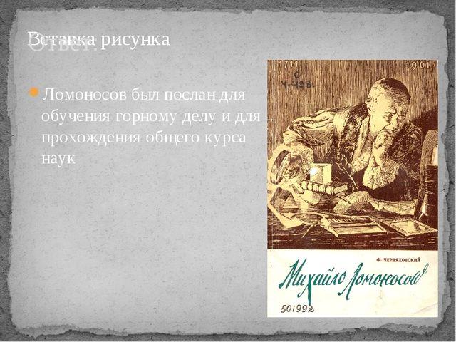 Ответ: Ломоносов был послан для обучения горному делу и для прохождения общег...