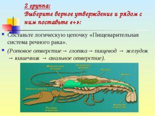 Составьте логическую цепочку «Пищеварительная система речного рака». (Ротово