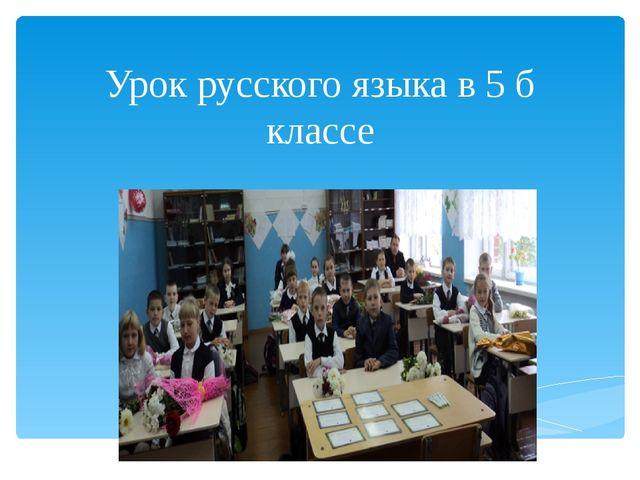 Урок русского языка в 5 б классе