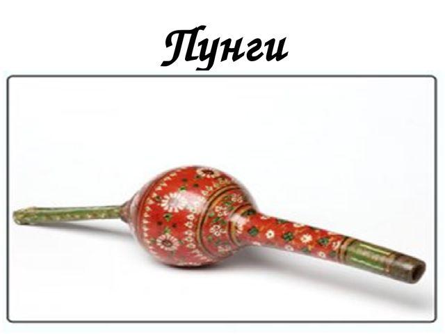Пунги