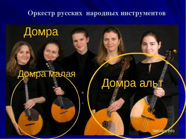 Оркестр русских народных инструментов Домра
