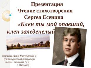 Презентация Чтение стихотворения Сергея Есенина «Клен ты мой опавший, клен з