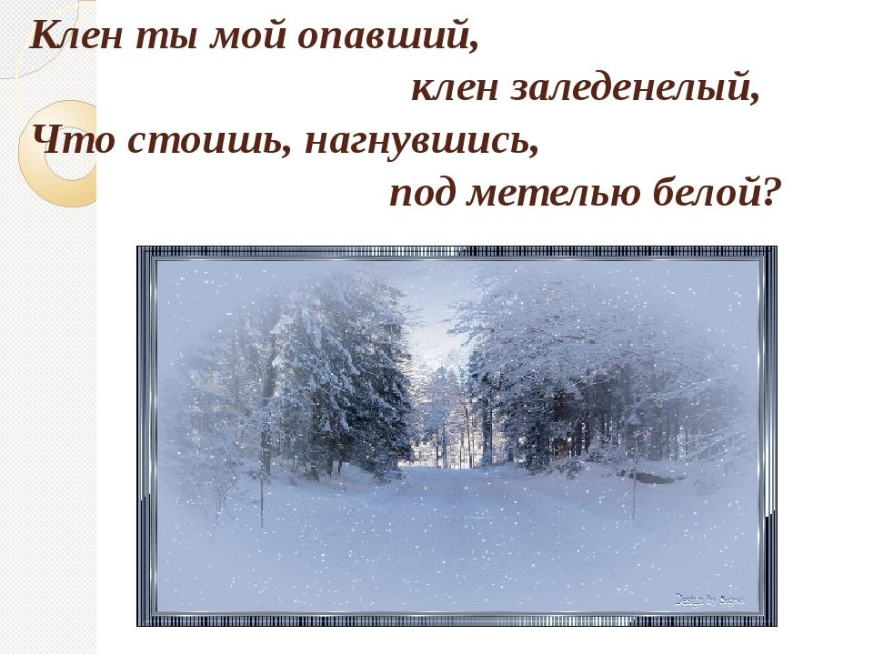 Клен ты мой опавший, клен заледенелый, Что стоишь, нагнувшись, под метелью бе...