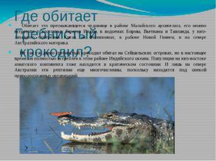 Где обитает Гребнистый крокодил? Обитает это пресмыкающееся чудовище в районе