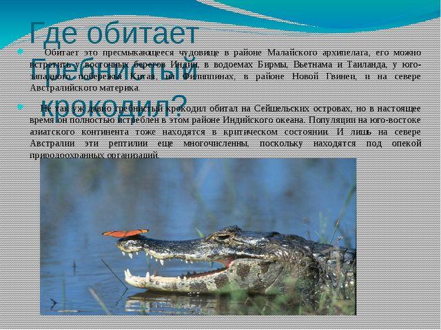 Где обитает Гребнистый крокодил? Обитает это пресмыкающееся чудовище в районе...