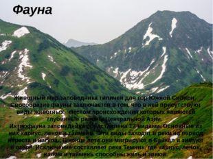 Фауна Животный мир заповедника типичен для гор Южной Сибири. Своеобразие фаун