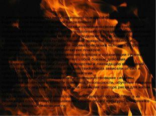 В деятельности человека по обеспечению пожарной безопасности можно выделить т