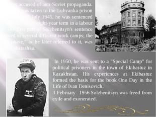 He was accused of anti-Soviet propaganda. Solzhenitsyn was taken to the Lub