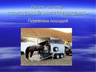 Проект на тему: «ВОЛШЕБНЫЙ МИР ТЕЛЕВИДЕНИЯ» Перевозка лошадей
