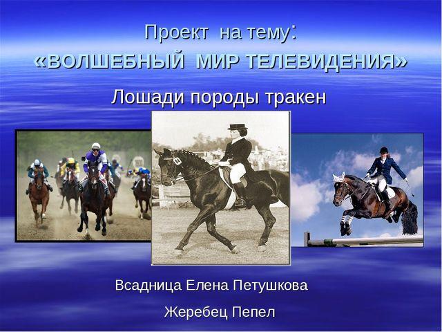 Проект на тему: «ВОЛШЕБНЫЙ МИР ТЕЛЕВИДЕНИЯ» Лошади породы тракен Всадница Еле...