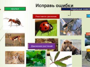 Исправь ошибки Реактивное движение Ходильные животные стопоходящие пальцеходя