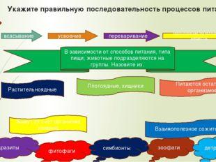 Укажите правильную последовательность процессов питания всасывание усвоение п