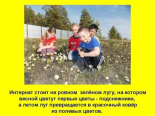 Интернат стоит на ровном зелёном лугу, на котором весной цветут первые цветы