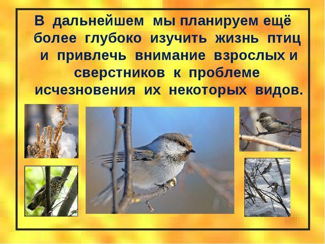 В дальнейшем мы планируем ещё более глубоко изучить жизнь птиц и привлечь вн...