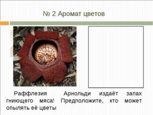№ 2 Аромат цветов Раффлезия Арнольди издаёт запах гниющего мяса! Предположите