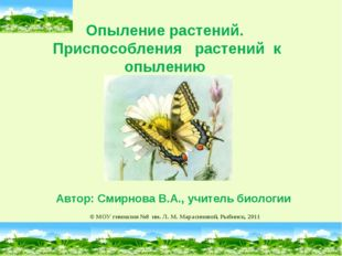 © МОУ гимназия №8 им. Л. М. Марасиновой, Рыбинск, 2011 Опыление растений. Пр