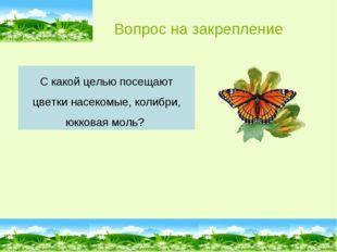 С какой целью посещают цветки насекомые, колибри, юкковая моль? Вопрос на зак