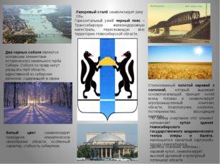 Герб Новосибирской области представляет собой геральдический щит, в серебряно
