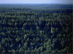 Почти половина площади страны занимают леса, как хвойные, так и широколиствен