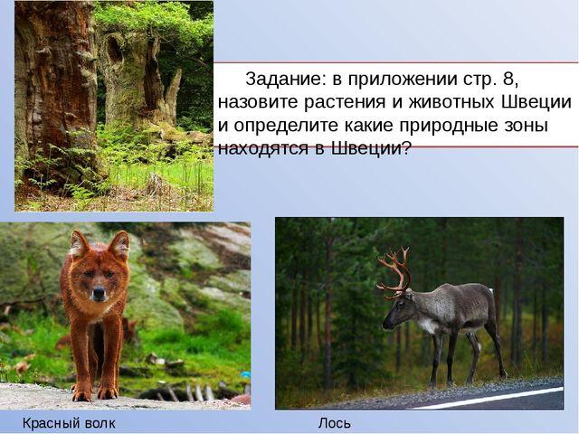 Задание: в приложении стр. 8, назовите растения и животных Швеции и определи...