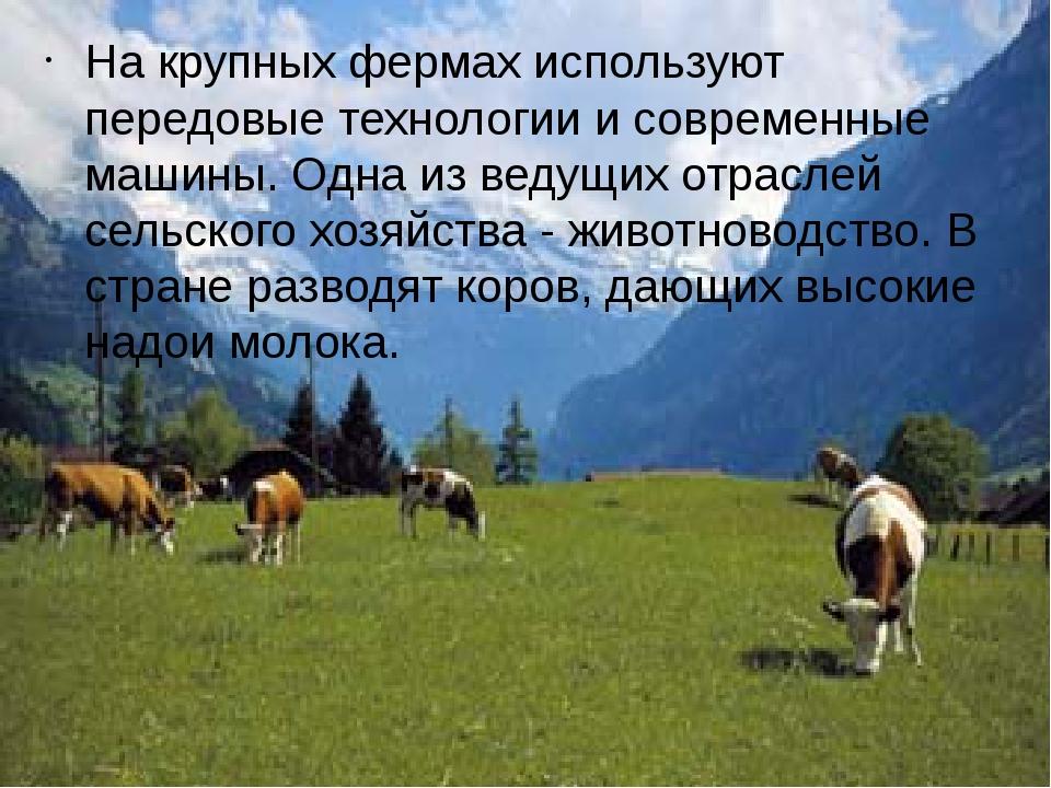 На крупных фермах используют передовые технологии и современные машины. Одна...