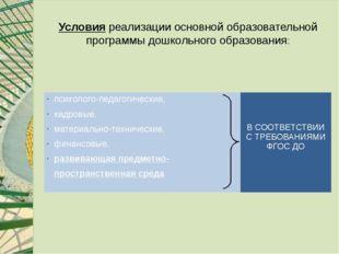 Условия реализации основной образовательной программы дошкольного образования