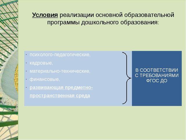 Условия реализации основной образовательной программы дошкольного образования...
