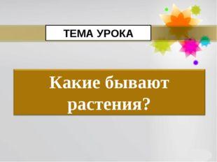 ТЕМА УРОКА Page *