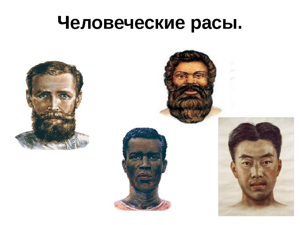 Человеческие расы.
