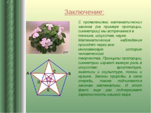 Заключение: С проявлениями математических законов (на примере пропорции, симм