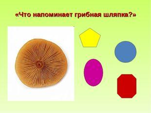 «Что напоминает грибная шляпка?»