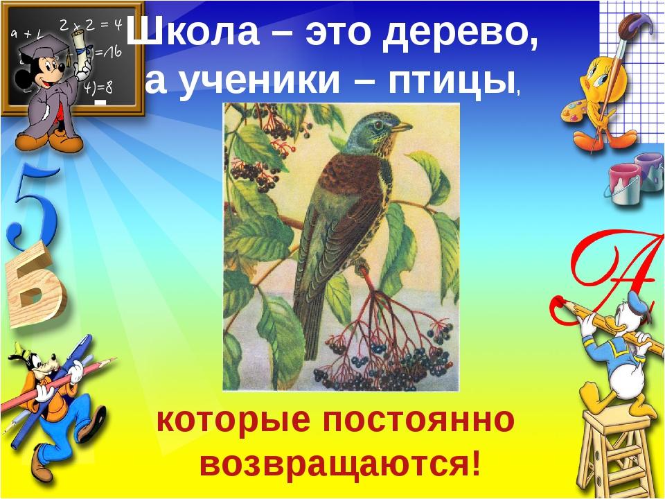 Школа – это дерево, а ученики – птицы, которые постоянно возвращаются!