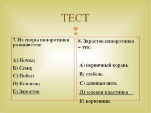 ТЕСТ 7. Из споры папоротника развивается: А) Почка; В) Семя; С) Побег; D) Кол