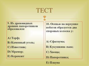 ТЕСТ 9. Из древовидных древних папоротников образовался: А) Торф; В) Каменный