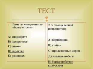 ТЕСТ Гаметы папоротника образуются на : А) спорофите В) предростке С) зиготе