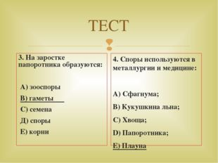 ТЕСТ 3. На заростке папоротника образуются: А) зооспоры В) гаметы С) семена Д