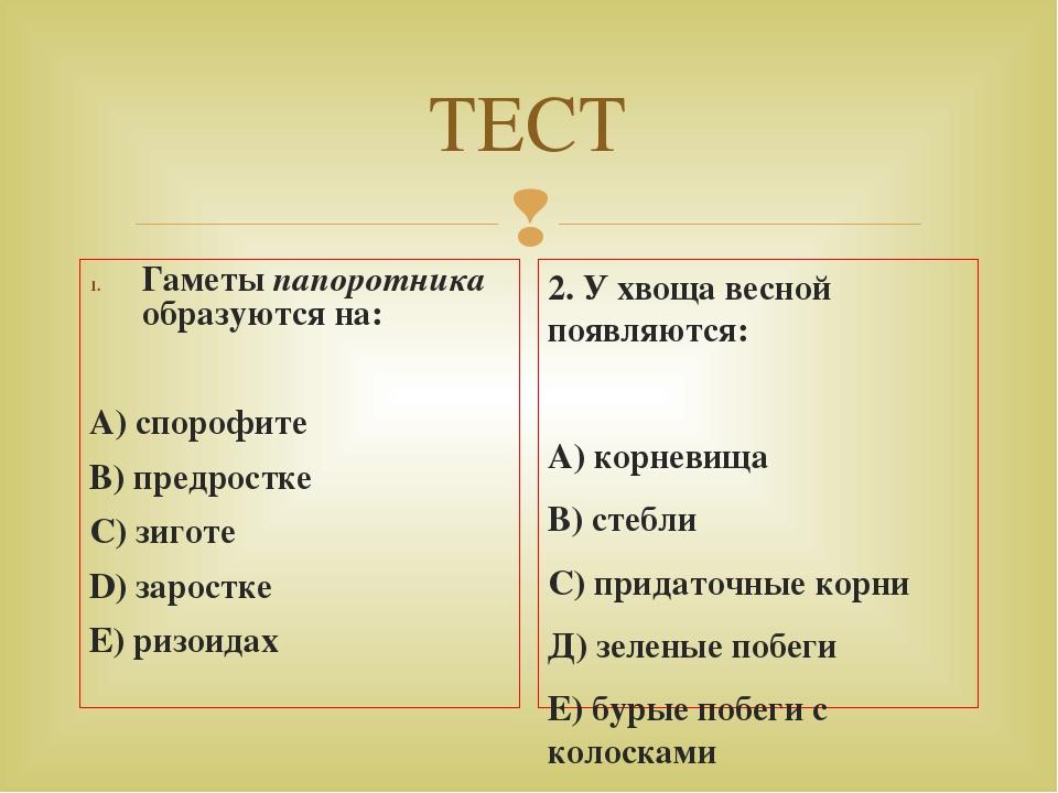 ТЕСТ Гаметы папоротника образуются на: А) спорофите В) предростке С) зиготе D...