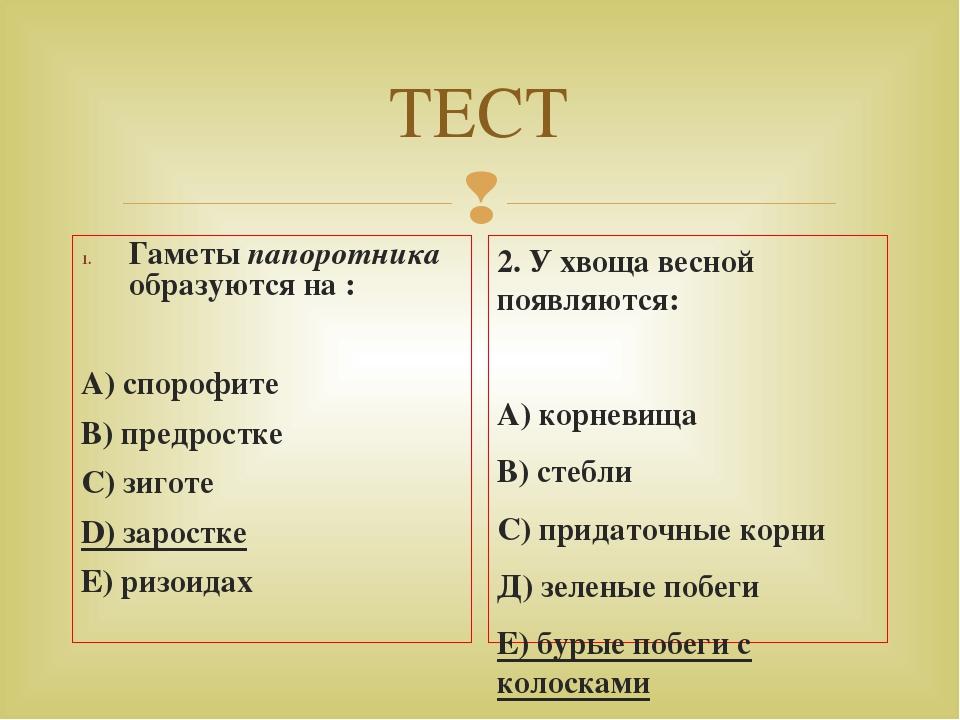 ТЕСТ Гаметы папоротника образуются на : А) спорофите В) предростке С) зиготе...