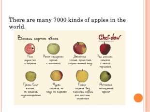 . There are many 7000 kinds of apples in the world.